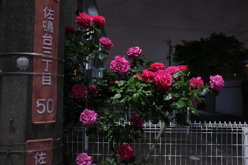 f:id:tfujimura:20110509222816j:image:w640