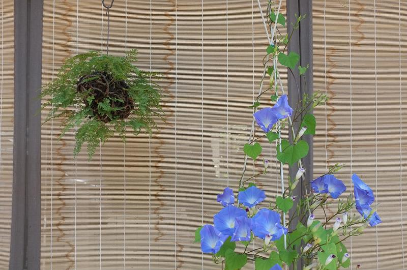 f:id:tfujimura:20110815014854j:image:w640