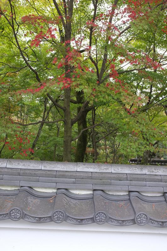 f:id:tfujimura:20111107231318j:image:h640