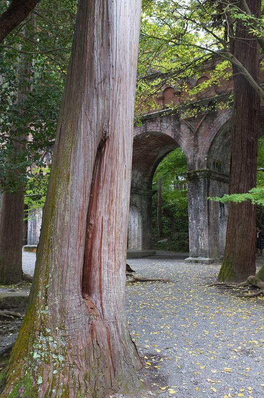 f:id:tfujimura:20111107231321j:image:h640