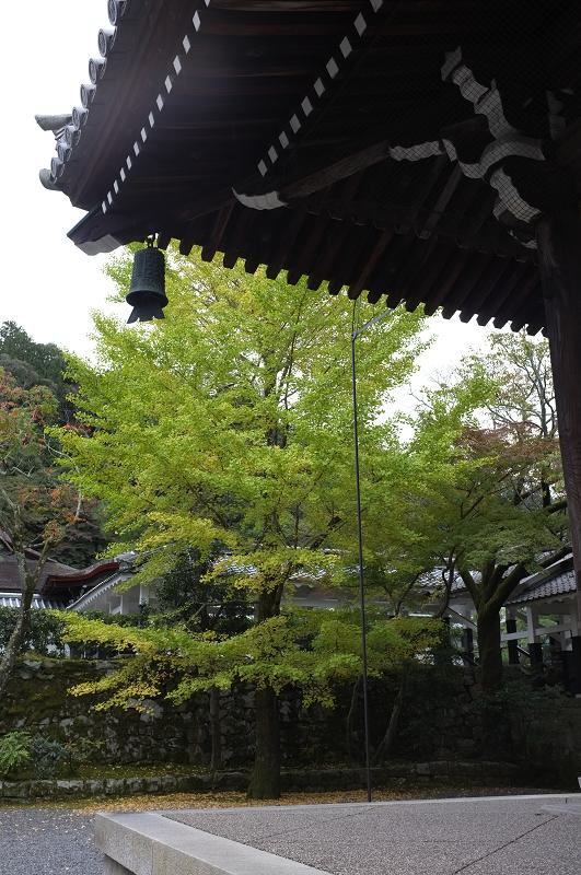 f:id:tfujimura:20111107231322j:image:h640
