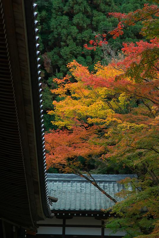 f:id:tfujimura:20111123212235j:image:h640