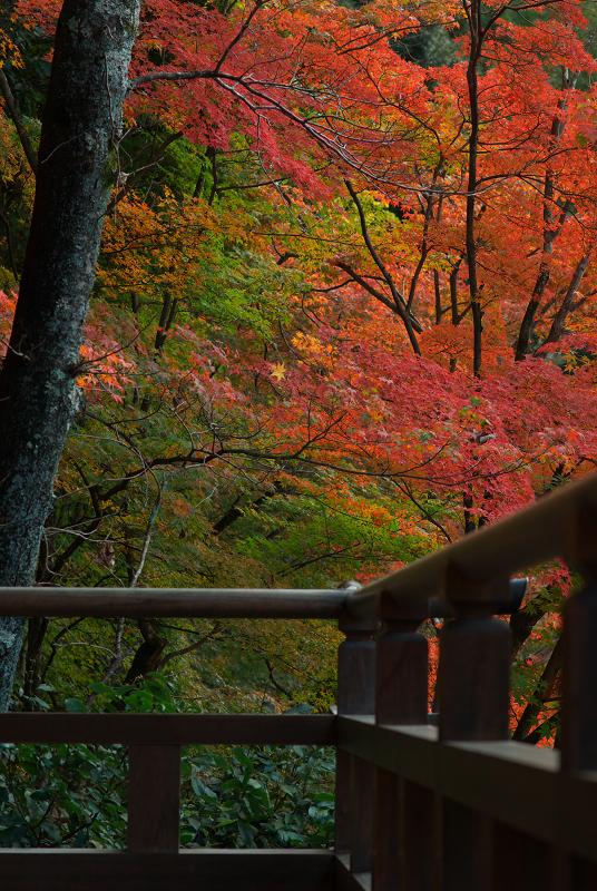 f:id:tfujimura:20111123212236j:image:h640