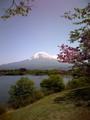 田貫湖から富士山