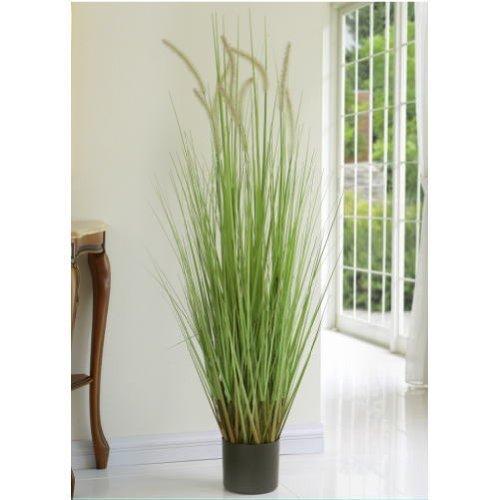 おすすめの人工観葉植物 キャッツテールグラス