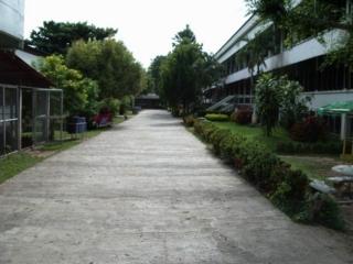 f:id:thai-blog:20040901090057j:image:left