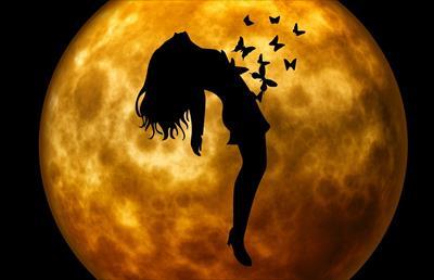 鏡リュウジの「魔女と魔法学」をタイトルに惹かれて読んでみた感想