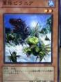 軍隊ピラニア 遊戯王カード KONAMI
