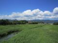 草原と小川。緑がきれいだ。