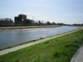 陽光に煌く河川敷。