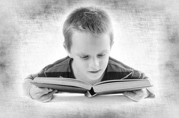 読書をする頭のいい子供