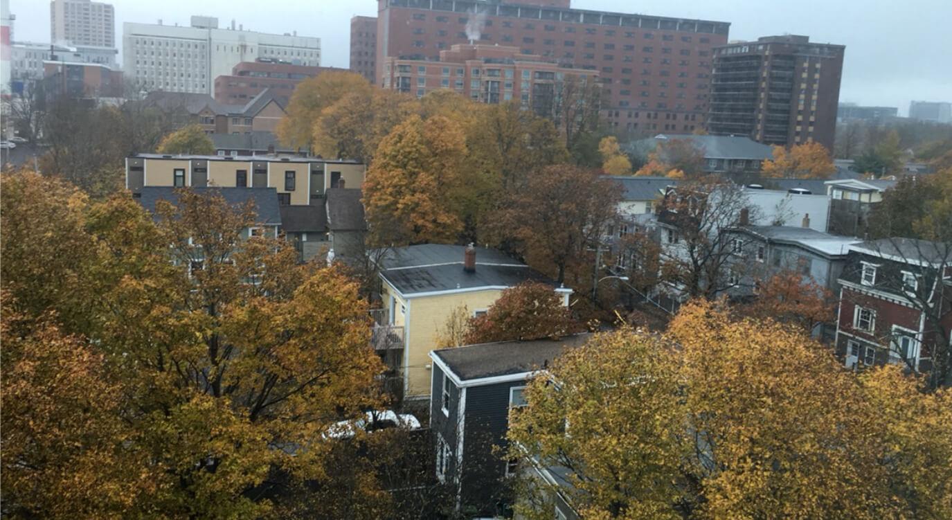 ハリファックスの秋は紅葉が綺麗です。街に多くの緑があるので、綺麗な色合いの町並みを見ることができます。