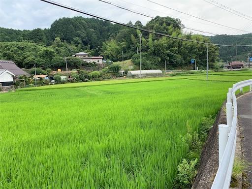 f:id:the_kyoto:20200803094458j:image