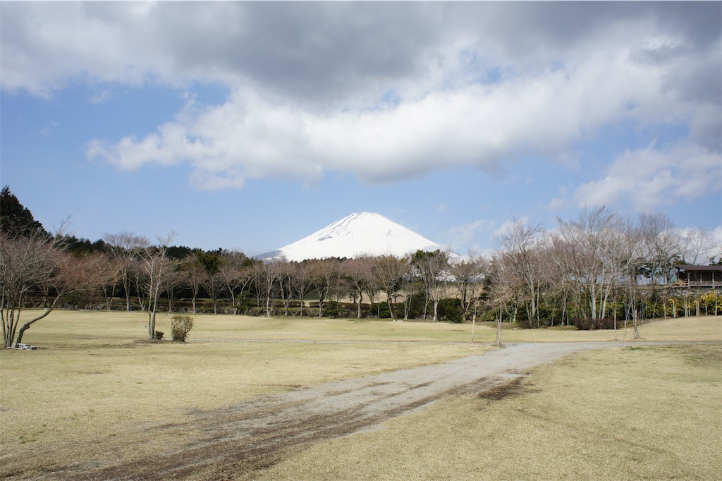 f:id:theakatsuki401:20190326101741j:image