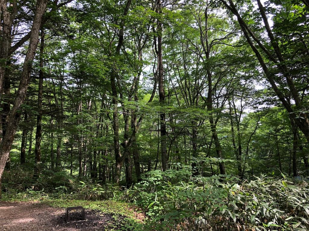 f:id:theakatsuki401:20190716104519j:image