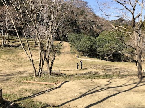 f:id:theakatsuki401:20200213115710j:plain