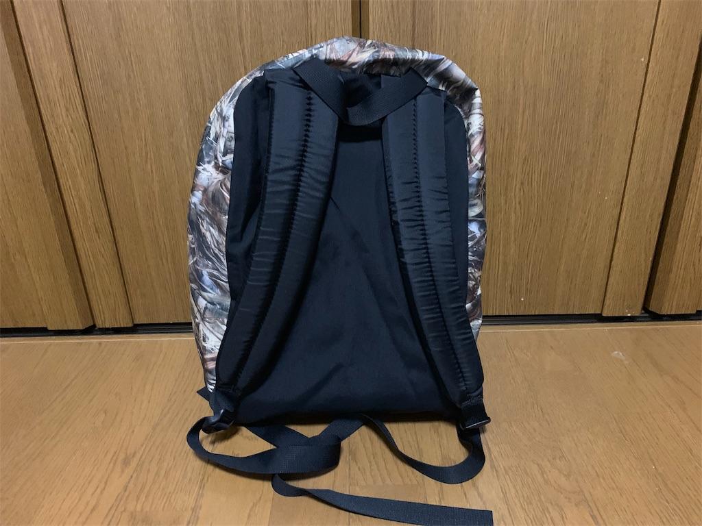 f:id:thebackpack:20190610205522j:image