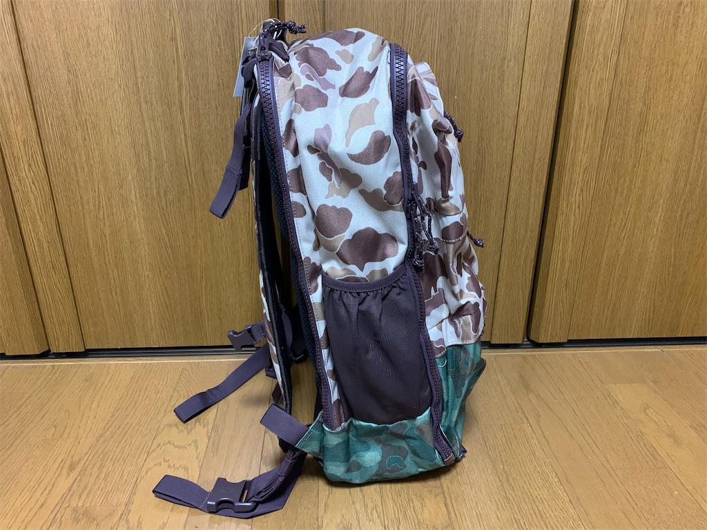 f:id:thebackpack:20200222173537j:image