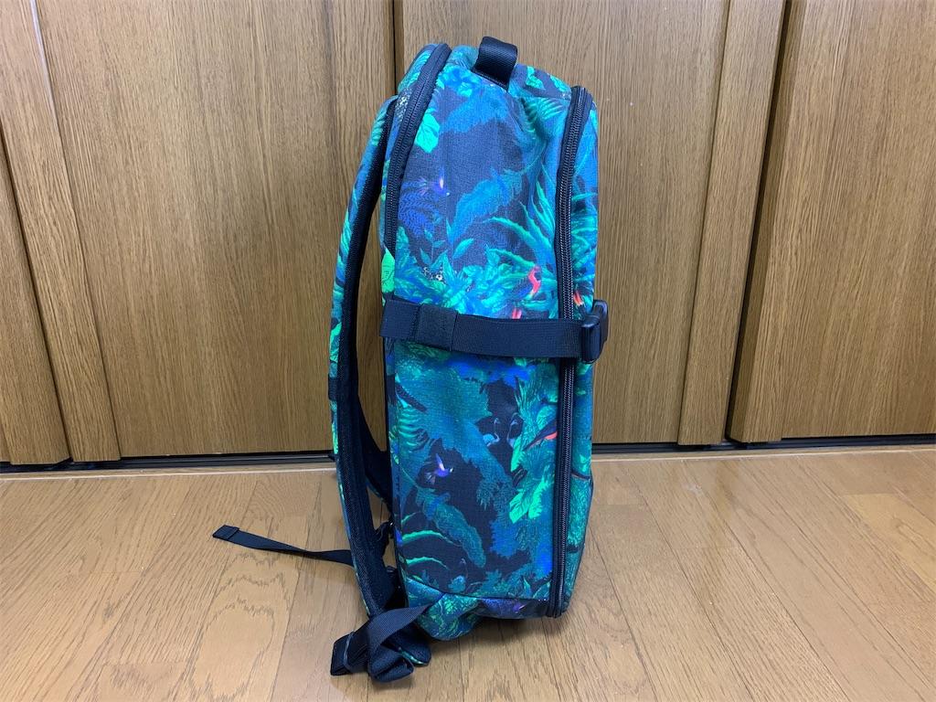 f:id:thebackpack:20200409103925j:image