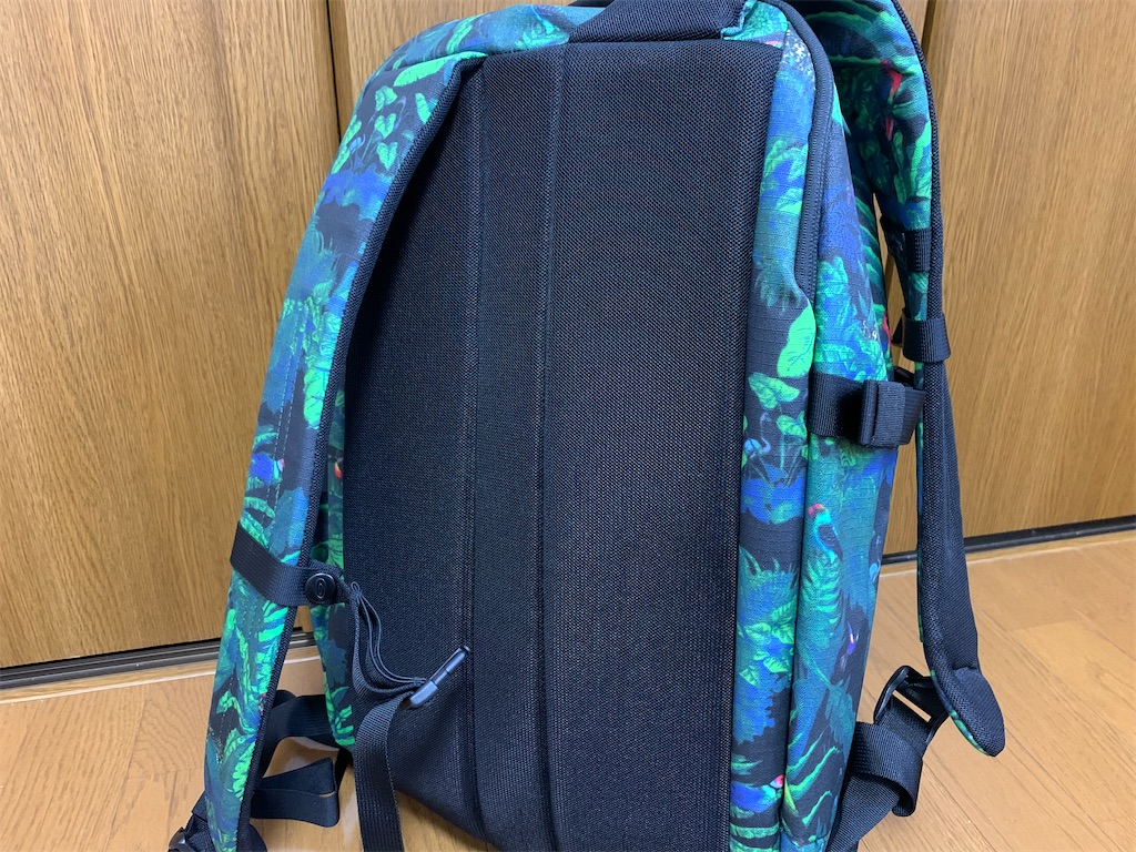 f:id:thebackpack:20200409103947j:image