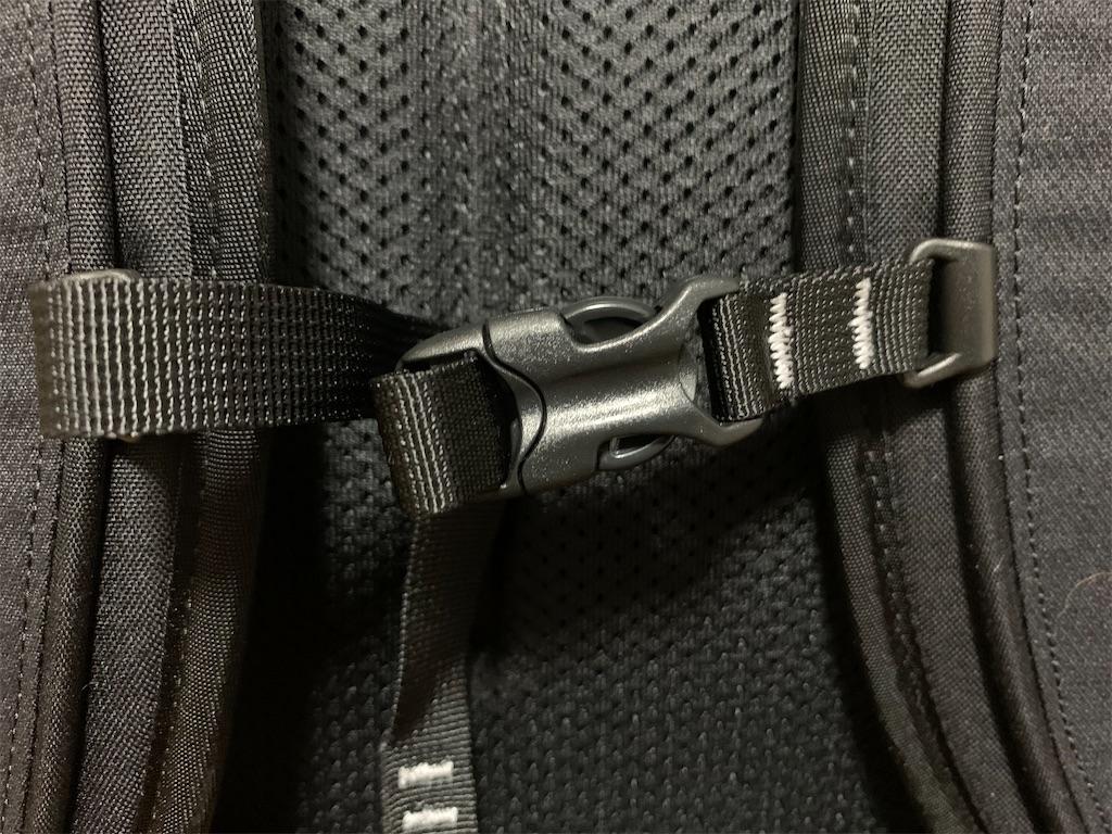 f:id:thebackpack:20210325195036j:image