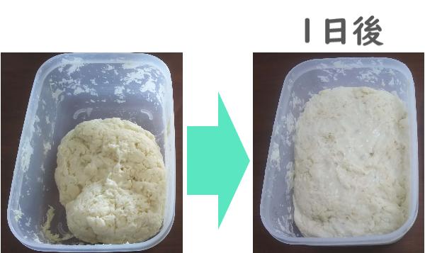 一晩冷蔵庫で発酵させる前と後 比較