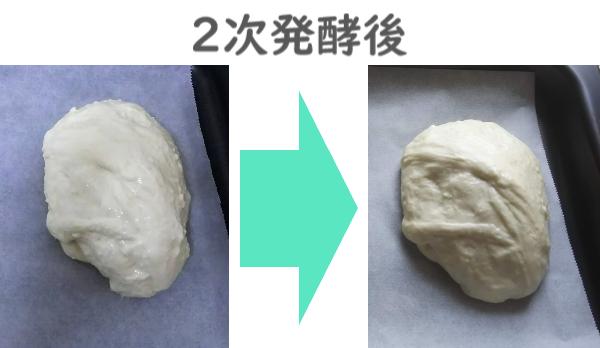 2次発酵後の大きさの違い
