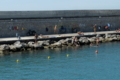 泳ぐイタリアン サレルノの港 アマルフィー逝きのフェリーより