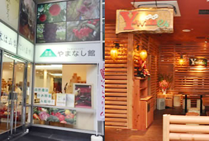 富士の国やまなし館|theDANN media