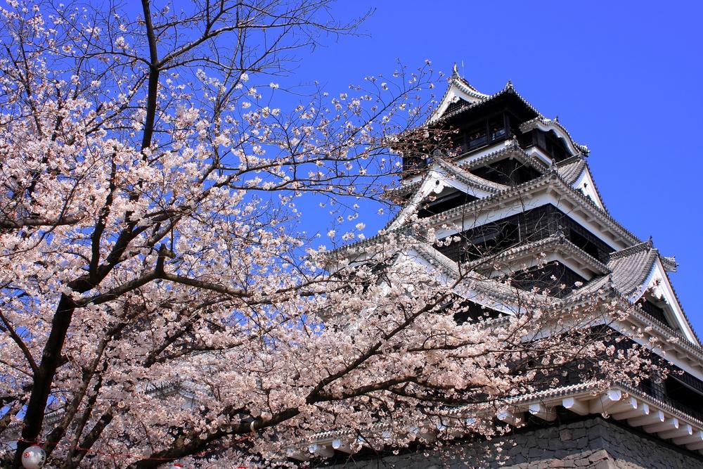 【2019年】熊本のおすすめ酒屋・ワインショップ5選|theDANN media