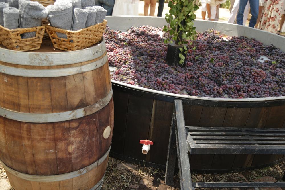 ノンアルコールワインの造り方|theDANN media