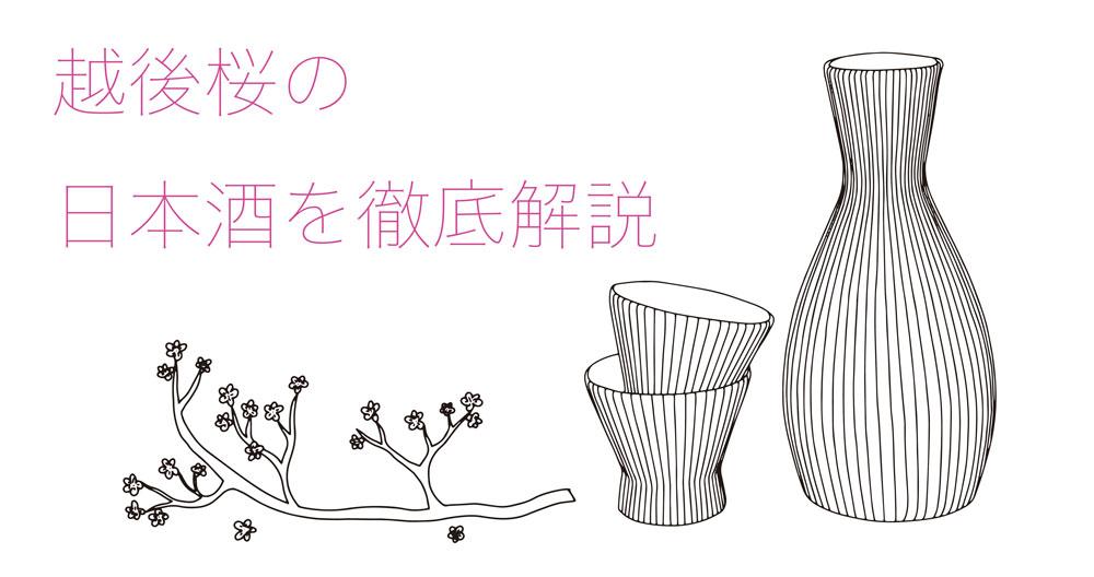 越後桜の日本酒を徹底解説!味の特徴は?どんなこだわりがあるの?|theDANN media