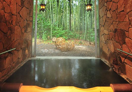 秘境で温泉を楽しむ「割烹の宿 いま井 五十嵐邸 結」|theDANN media