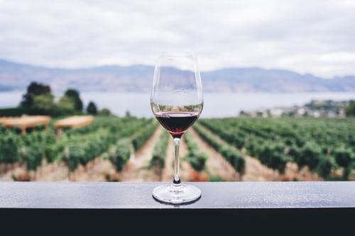 ノンアルコールワインとは?どこで買えるの?|theDANN media