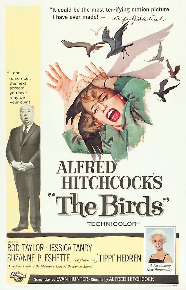 映画「鳥」ポスター