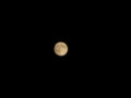 [月]仲秋の名月20100922