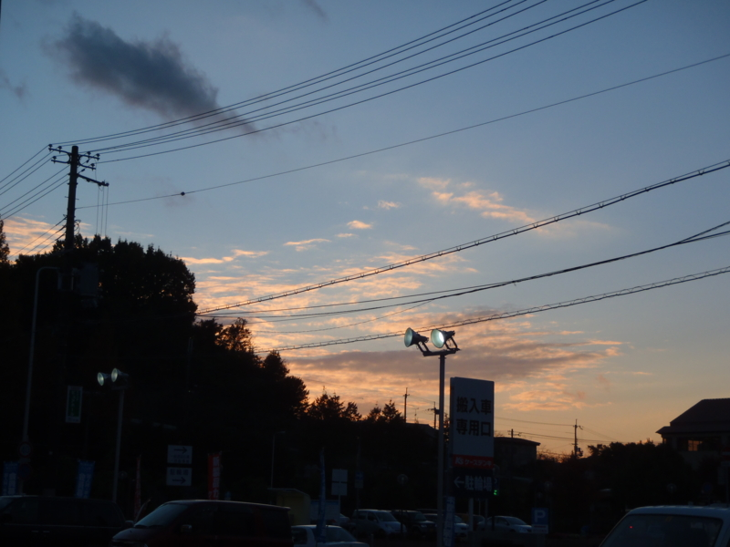 f:id:thtitdte-gmail-com:20101118163705j:image