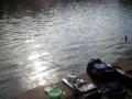 [石神井公園][カレー][おでん][ジュース]釣り人ログアウトのパターン