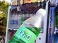 [石神井公園][カレー][おでん][ジュース]価格設定もワザとらしいメロン味!