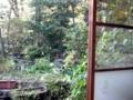 [石神井公園][カレー][おでん][ジュース]時には外にも目を向けて