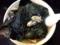 大量牡蠣海老スープと大量鰹節スープの2層式スペシャルラーメン