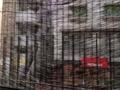 [麻布十番][菓子][たいやき][焼きそば][カフェ・喫茶店][甘味処]すだれ越しに見える麻布十番商店街