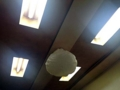 [豪徳寺][山下][ラーメン][餃子]夏場大活躍しそうなシーリングファンならぬ扇風機、囲むように蛍光灯