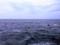 [江ノ島][片瀬江ノ島][風景][旅]