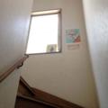 [鵠沼海岸][菓子][かき氷][甘味処][カフェ・喫茶店]「庵庵庵、とっても大好き~」と口ずさみ駆け上がる階段