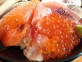 [鳥取][鳥取砂丘][和食][丼もの][寿司・魚介類][定食・食堂]タイを挟んでいるとはいえサケの魚卵なんだよな