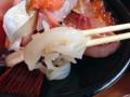 [鳥取][鳥取砂丘][和食][丼もの][寿司・魚介類][定食・食堂]きれいなイカしてるだろ。ウソみたいだろ。死んでるんだぜ
