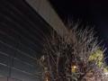 [有楽町][ラーメン][チャーハン]旧東京都庁舎の跡地に建設された東京国際フォーラム