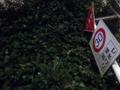 [日暮里][三河島][洋食][定食・食堂][漫画][孤独のグルメ]路地出口に設けられた「止まれ」の標識、蔦の成長よ止まれってことか
