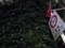 路地出口に設けられた「止まれ」の標識、蔦の成長よ止まれってことか